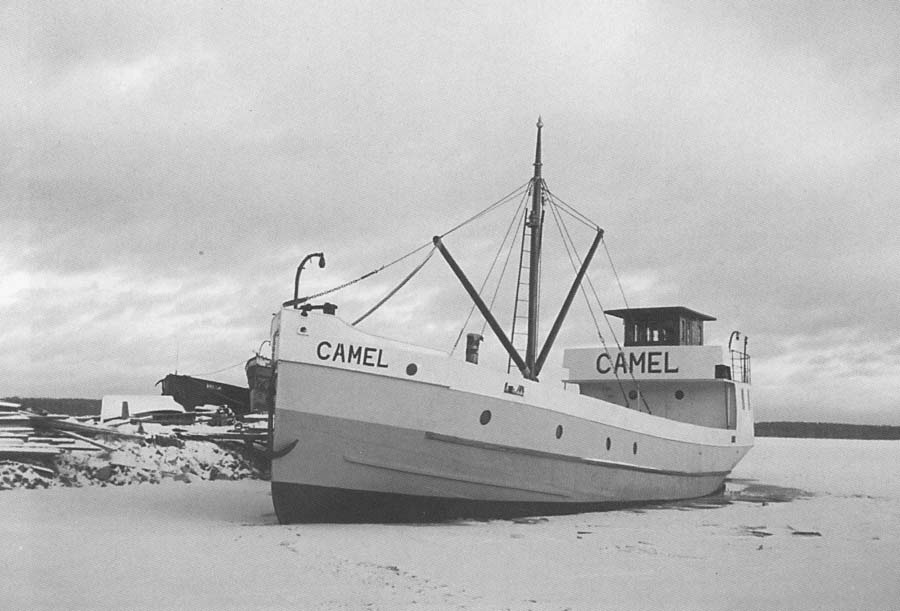 s/s Camel